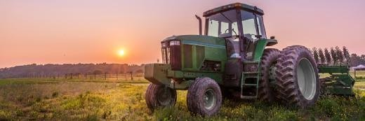 秘密报告进入农村付款IT问题在RPA首席执行官中指出