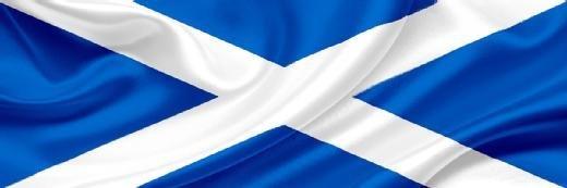 25苏格兰议会寻求联合首席数字官